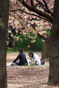 'Couple' Image By Mr. Hayata